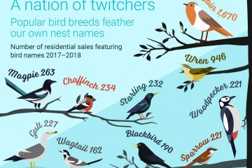 bird names in property cardiff
